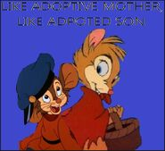 Like adoptive mother, Like adopted son.