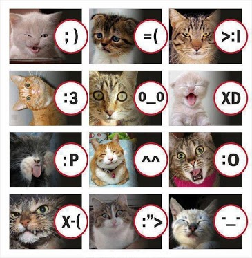 File:Cat Emos.jpg