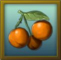 File:ITEM fruit.png