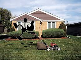 File:Mr Lawn boy.png