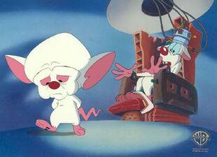 5)-48718-Pinky-&-Brain