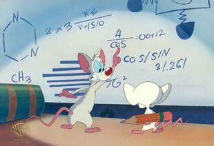 01)-80545-Pinky-&-The-Brain