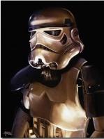 File:Bren main trooper.jpg