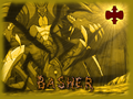 BasherPoster