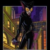 File:THEBATMANBIOPIX2catwoman.jpg