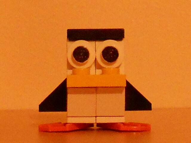 File:Crazed penguin 1.jpg