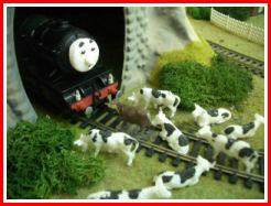 File:Nigel Herbert and the Cows1.jpg