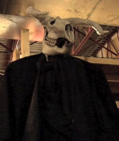 Cow skull giant