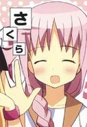 K Sakura