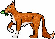 File:Re-Frecklewhisker.png