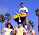 Road Rules: Islands