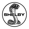 Tc cars shelby