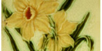 Relief Moulded Daffodils - Pilkington's Tiles