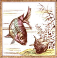 Category:Fish