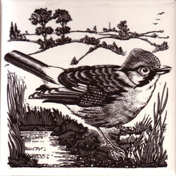 Sparrow from British Birds series designed by Geoff Mead for Dorincourt Tiles Hand Screen printed c1976