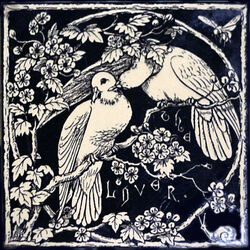 Seven Ages of Bird Life - The Lovers
