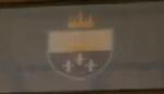 Flagofauradon2