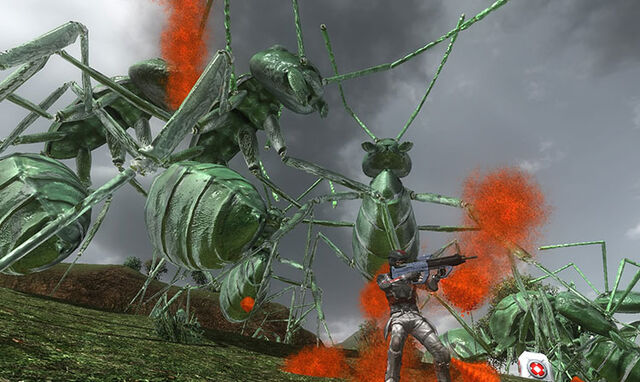 File:Dark Green Ants.jpg