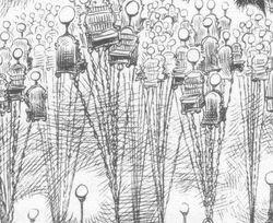 Sumpwoodlecterns