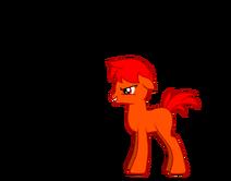 Arden the pony
