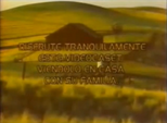Videovisa 1989 b