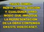 Videovisa 1991 e