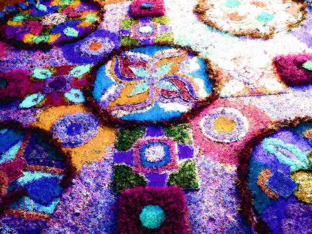 File:Flower-field-colour-1.JPG