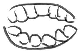 Teeth01