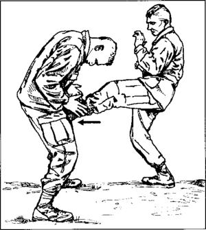 Groin kick