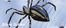 File:Silver spider.png