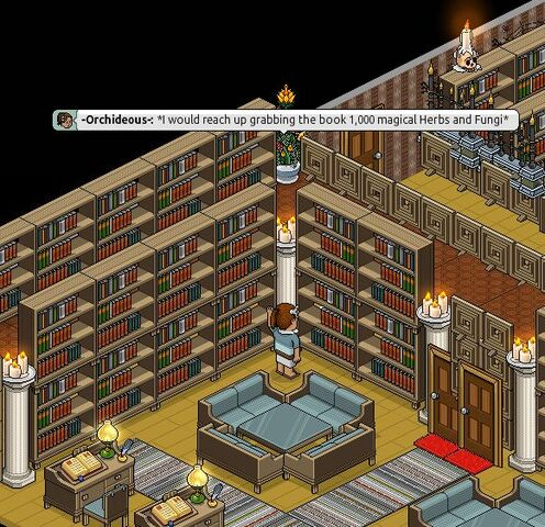 File:Roleplayexample1.jpg