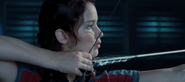 Katniss training ctr bow