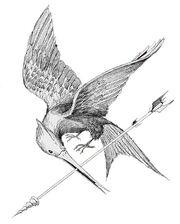 Mockingjay sketch by TOB.jpg