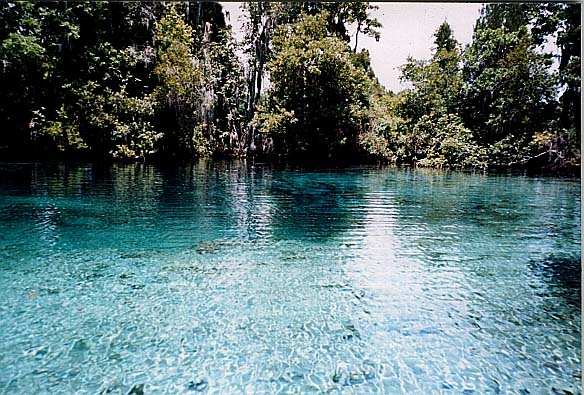 File:Crystal River.jpg