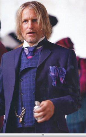 File:Haymitch-the-hunger-games-movie-28818724-402-634.jpg