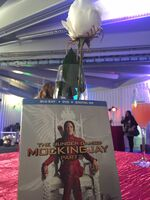 THG-Mockingjay Party-DVD