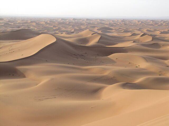 File:Sand Dunes.jpg