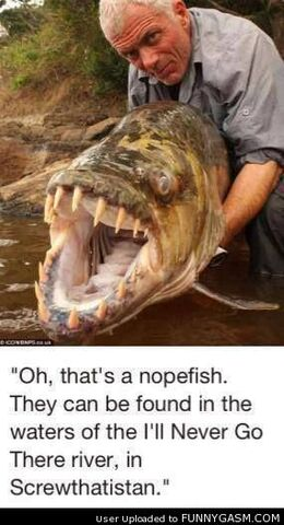 File:Thats-A-Nope-Fish.jpg