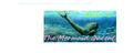 Thumbnail for version as of 04:45, September 28, 2012