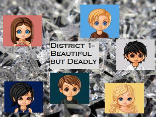 District 1 banner