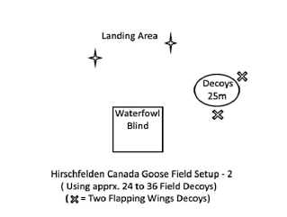 Goose setup 1