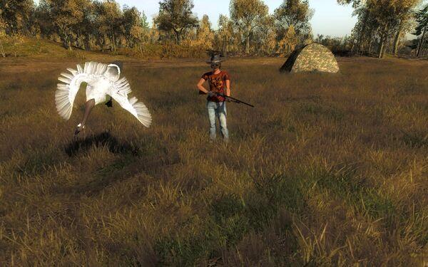 Wachtelchen 8746 brown leucistic goose