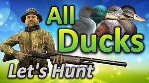 TheHunter Let's Hunt ALL DUCKS