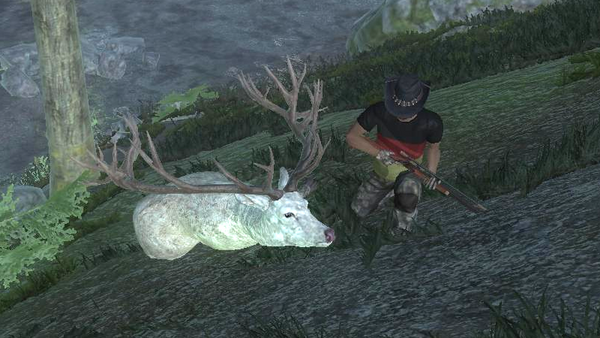 MonacoSteven albino red deer 271