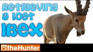 TheHunter Retrieving a lost Ibex