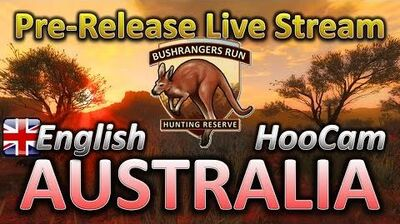 TheHunter AUSTRALIA EW Dev hugging a ROO! English Live Stream