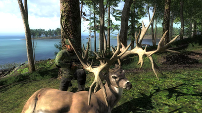 Trophy nt whitetail deer