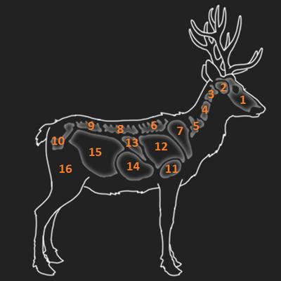 Red deer organs