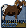 Bighorn sheep badge