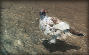 Ptarmigan screenshot2